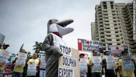 Activists hold a demonstration in front of the Japanese Embassy in Manila in 2016 to protest the start of the dolphin hunting season in Japan.