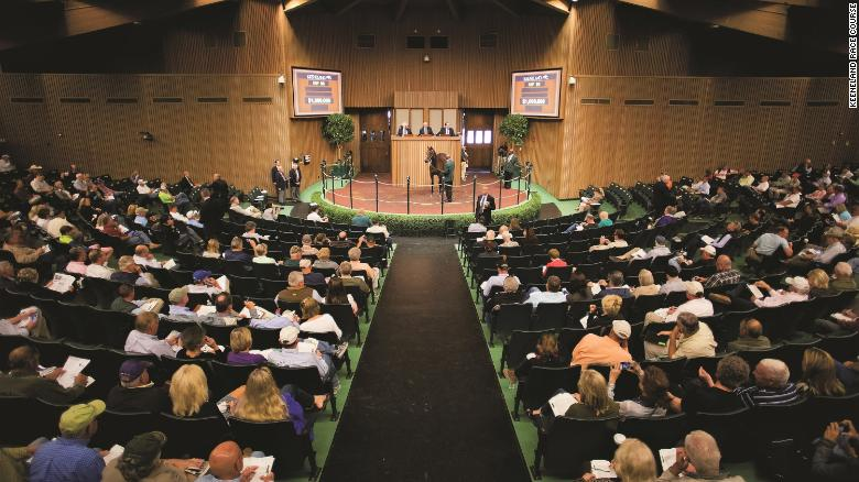 Each year Keeneland hosts three sales. Its two signature sales are the September Yearling Sale and the November Breeding Stock Sale. In January it also holds an All Ages Sale.