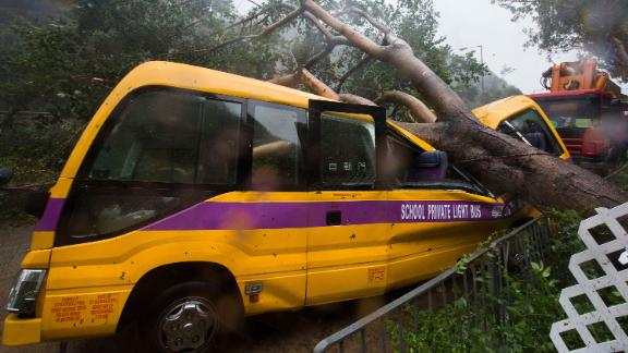A tree sits after falling onto a school bus in Hong Kong.