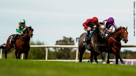 Saxon Warrior is to retire after badly damaging a tendon.