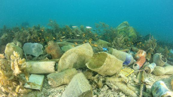 There are 150 million tons of plastic in our oceans, according to the World Economic Forum