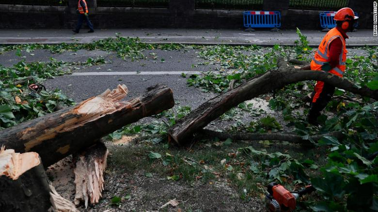 Workmen cut fallen trees in Dublin as Storm Ali moves across Ireland.