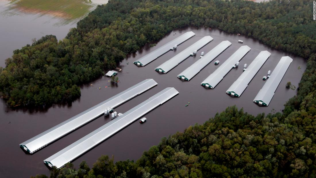 Millions of chickens and thousands of pigs died in Florence in North Carolina