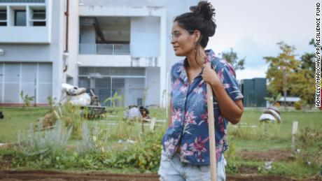 A community volunteer planting new crops at Huerto Semilla, an urban garden at the University of Puerto Rico.