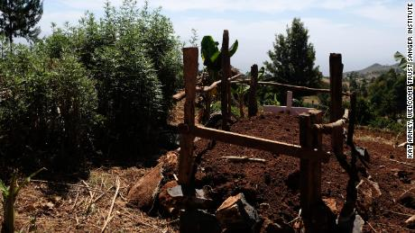 The graves of Emily's mother and father who both died of oesophageal cancer within a few years of each other, outside Iten in western Kenya.
