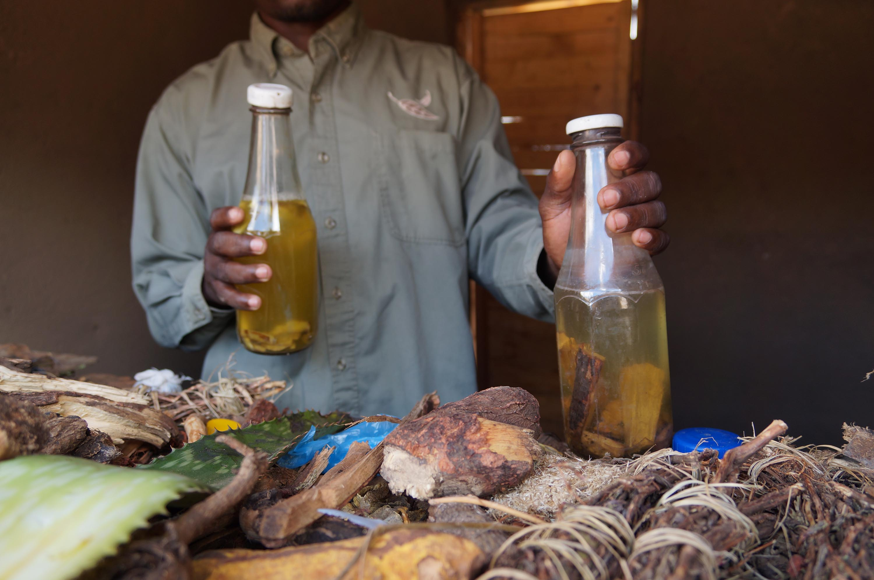 A traditional healer shows some of the abortion-inducing concoctions.