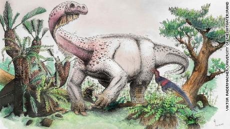 New 26,000-pound dinosaur discovery was Earth's largest land animal