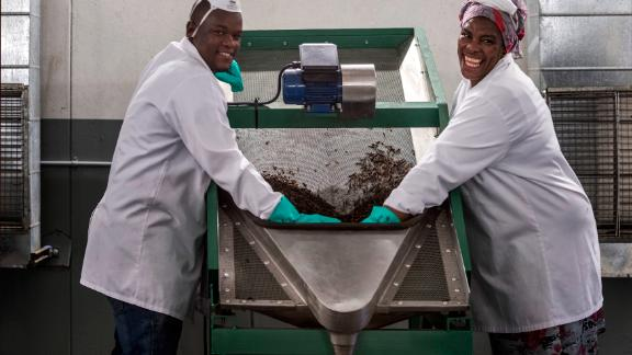 Staff members at an AgriProtein factory. The company has two facilities in South Africa that hold a total of more than 16 billion flies.