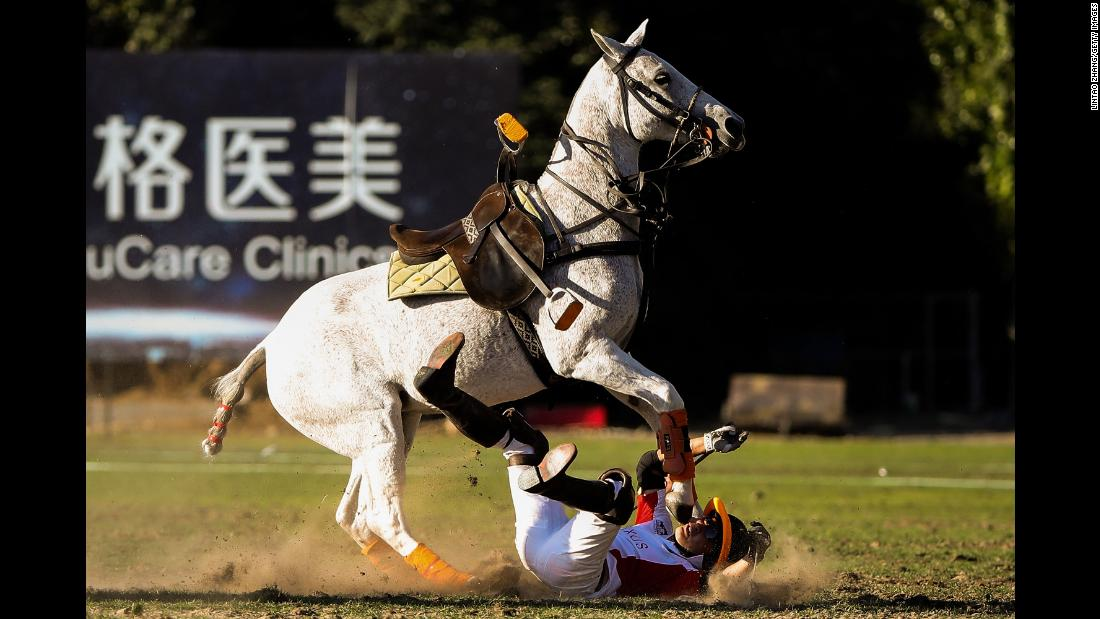 Wang Gang of Team AXUS falls during a polo match at Beijing Tang Polo Club on September 23 in Beijing.