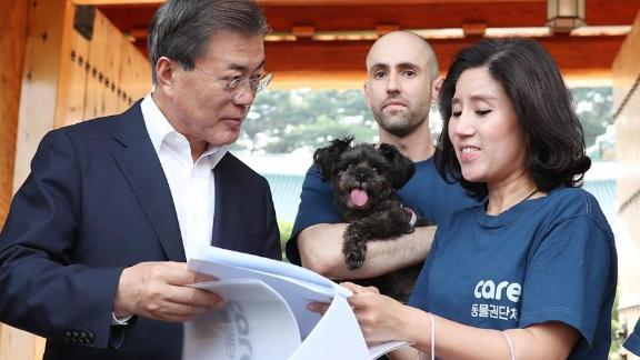 """South Korean President Moon Jae-in goes over paperwork to adopt a new """"first dog,"""" Tory, from Care Korea in July 2017."""