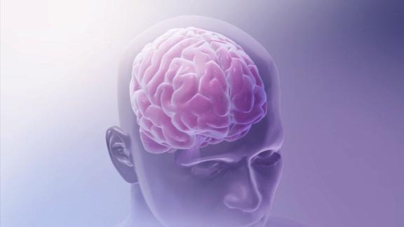 ####2015-09-07 00:00:00 Researchers can now image the entire disease process from the start of the tangles (tau proteins that have collapsed and twisted)  and plaques (clumps of amyloid proteins that build up in the space between nerve cells) that may unlock the secrets of Alzheimer's disease.