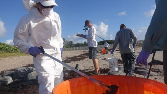 Palm Beach County workers pick up dead fish Thursday in Ocean Ridge, Florida.