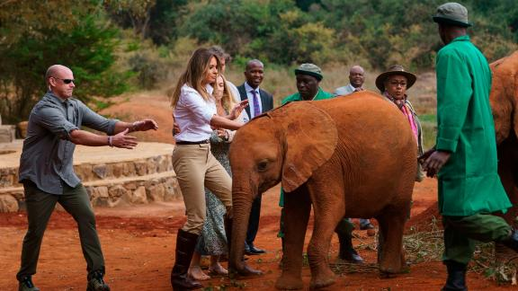 A baby elephant bumps into first lady Melania Trump as she visits the David Sheldrick Wildlife Trust's orphan elephant rescue at Nairobi National Park.