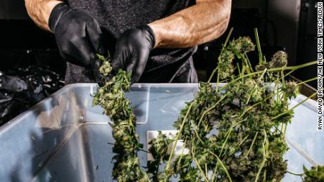 Corporate America is investing in pot because people want to eat and drink it