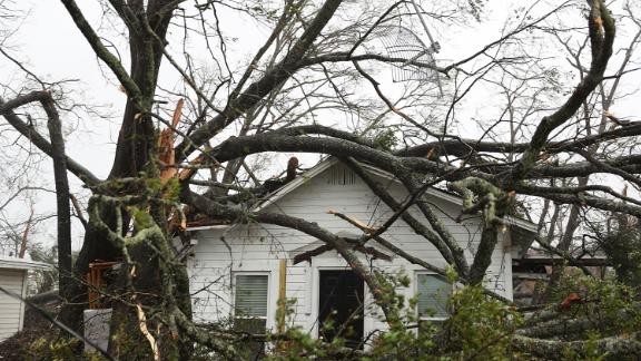 Trees lie on top of a home in Panama City.