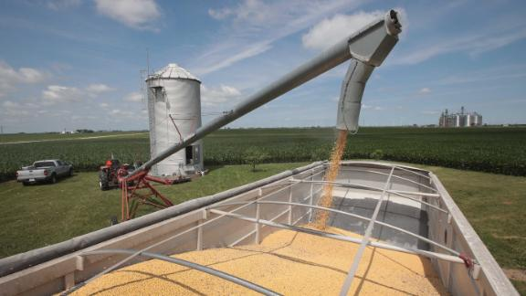 DWIGHT, IL - JUNE 13:  Farmer John Duffy loads soybeans from his grain bin onto a truck before taking them to a grain elevator on June 13, 2018 in Dwight, Illinois. U.S. soybean futures plunged today with renewed fears that China could hit U.S. soybeans with retaliatory tariffs if the Trump administration follows through with threatened tariffs on Chinese goods.  (Photo by Scott Olson/Getty Images)