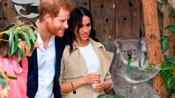 The Duke and Duchess of Sussex announced they were expecting a baby during their Australian tour.