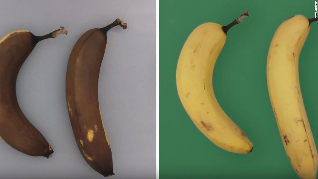 This simple step can double the shelf life of fruits and vegetables
