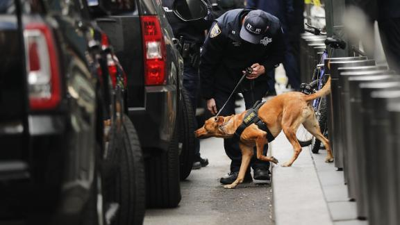 NEW YORK, NY - OCTOBER 24:  A Police bomb sniffing dog is deployed outside of the Time Warner Center after an explosive device was found this morning on October 24, 2018 in New York City. CNN