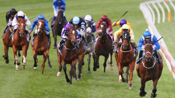 The wonder-horse showed her true potential in 2015 with a win in one of Australia
