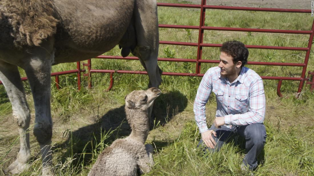 Saudi entrepreneur Walid Abdul-Wahab set up his company Desert Farms in the United States. It sells camel milk products through its website and health food shops and supermarkets.