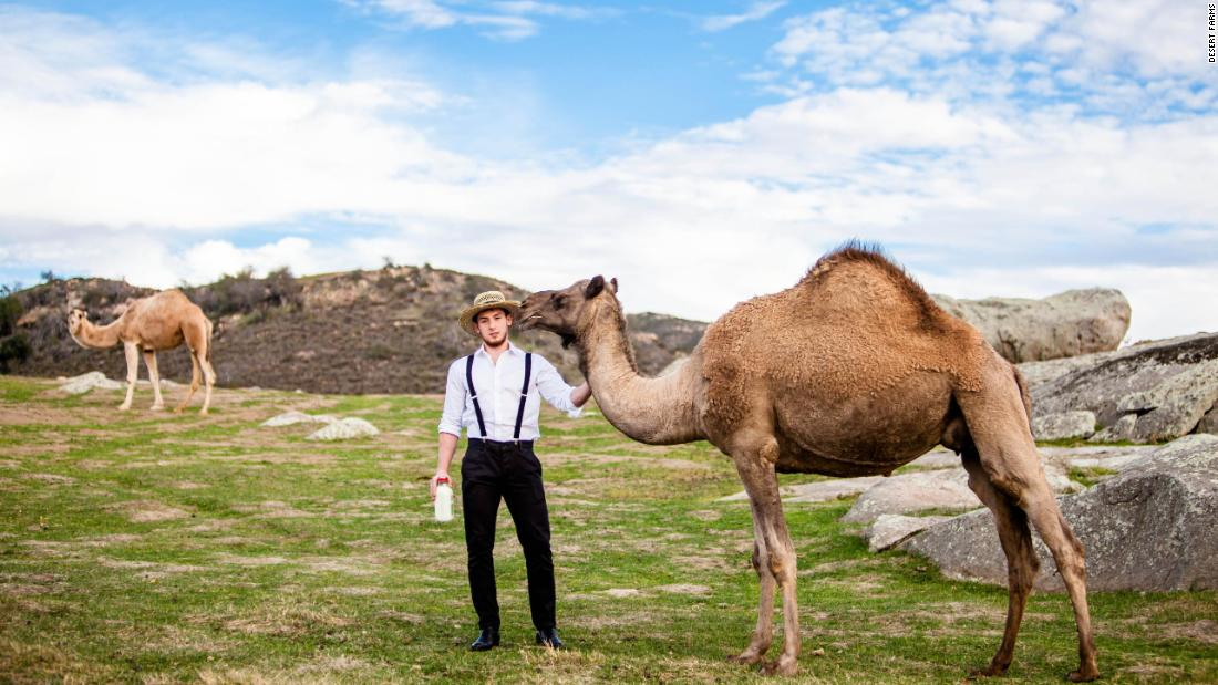 Saudi entrepreneur and Amish farmers bring camel milk to US – Trending Stuff