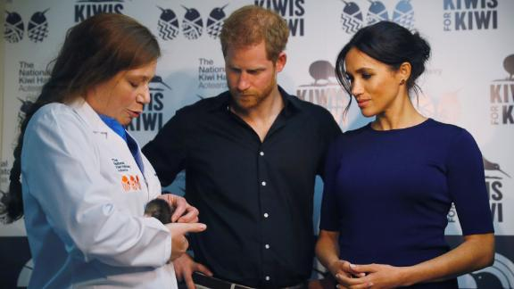 Prince Harry and Meghan, Duchess of Sussex look at kiwi chicks during their tour of the National Kiwi Hatchery at Rainbow Springs.