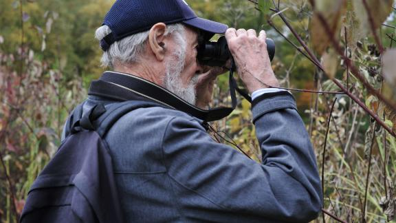 Mike Ritchie of Queens watches as Central Park's Mandarin duck emerges from the foliage on the far side of the park's Turtle Pond.