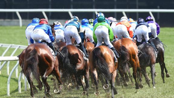 Horses jockey for position during the Melbourne Cup.