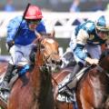 cross counter melbourne cup