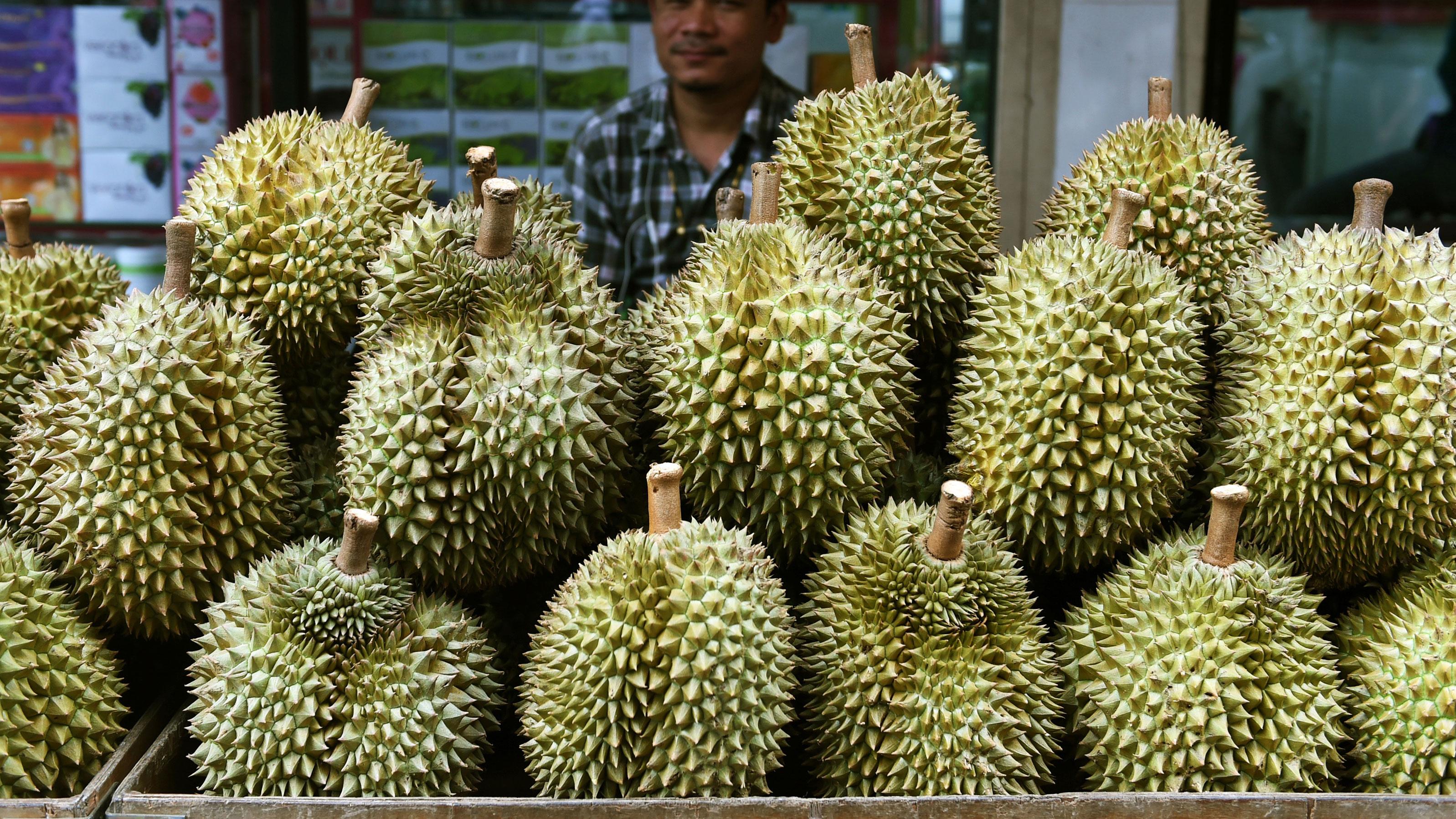 durian fruit ile ilgili görsel sonucu