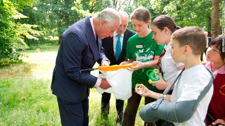 Charles inspects insects with students as he launches a new charity last year in London's Hyde Park.