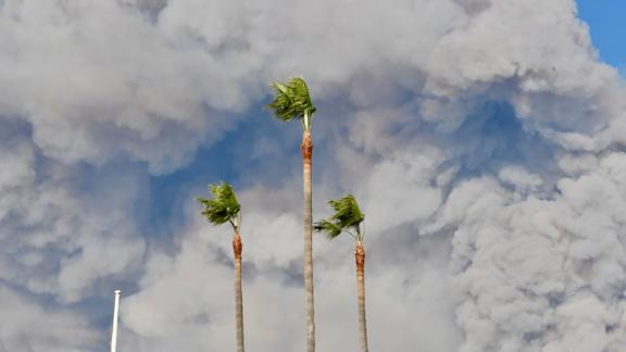 Smoke billows above Malibu trees in this photo posted to Instagram by Julie Ellerton.