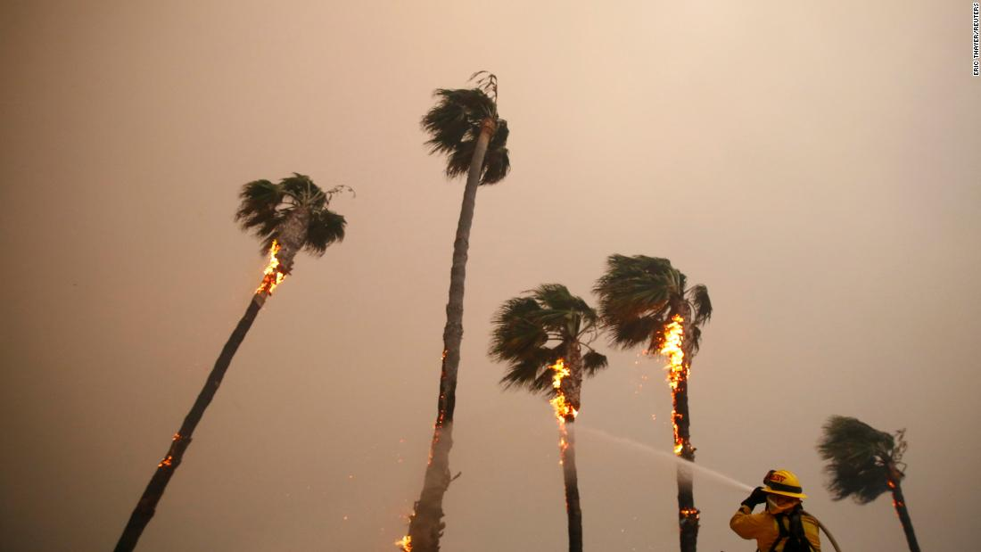 A firefighter sprays down palm trees as the Woolsey Fire burns in Malibu on Friday.