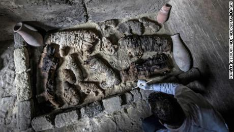 An archaeologist cleans mummified cats discovered south of Cairo by Egyptian archaeologists.