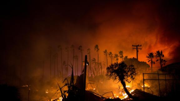 A row of palm trees stands as the Woolsey Fire continues to burn in Malibu on November 9.
