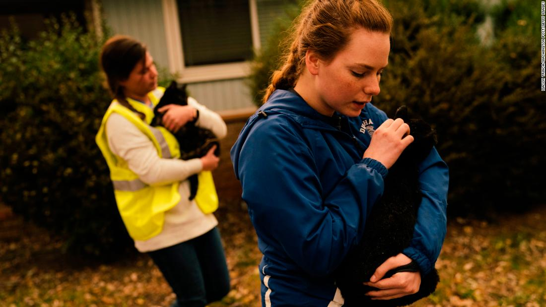 Samantha Esau and Emily Garcia take in stray cats from an evacuated Paradise home on November 12.