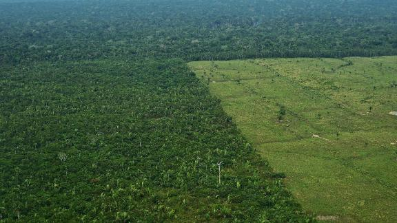 An aerial view of deforestation in Brazil