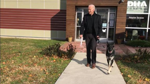 Former Vice President Joe Biden adopts a dog at the Delaware Human Association in Wilmington on Saturday, November 17.