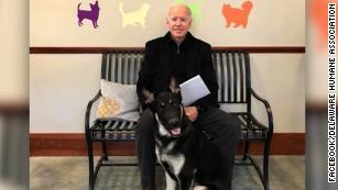 joe biden adopts rescue dog named major orig ec_00000923
