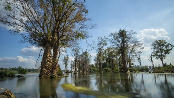"""Roughly meaning """"Mother of Rivers"""" in Thai and Lao languages, the Mekong River is a sacred lifeline in Southeast Asia.  Click through to explore the treasures of the Mekong as it winds its way from China to Vietnam."""
