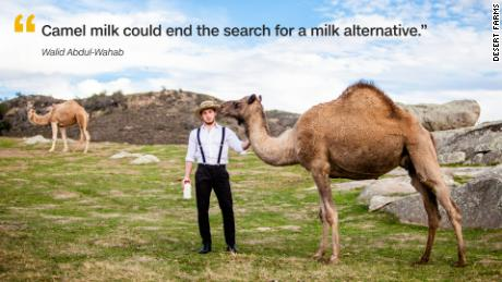 d55c8aac26 Bedouin tribes in the Middle East have been drinking camel milk for  thousands of years, but could it catch on with American consumers?