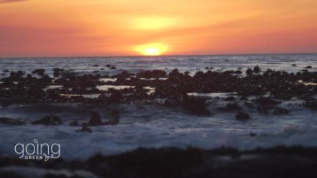 south africa marine protected areas_00004022.jpg