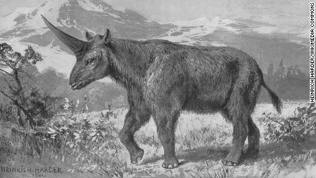 An illustration of Elasmotherium by Heinrich Harder, circa 1908.
