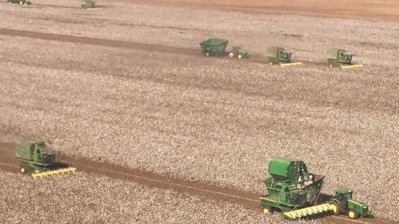Dozens of farmers brought in millions of dollars worth of machinery to harvest Greg Bishop's cotton crop.