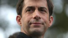 LITTLE ROCK, AR - NOVEMBER 04:  U.S. Rep. Tom Cotton (R-AR) and republican candidate for U.S. Senate in Arkansas waits to greet people entering a polling place on November 4, 2014 in Little Rock, Arkansas. As voters head to the polls,  U.S. Rep. Tom Cotton (R-AR) is holding a narrow lead over incumbent U.S. Sen. Mark Pryor (D-AR).  (Photo by Justin Sullivan/Getty Images)