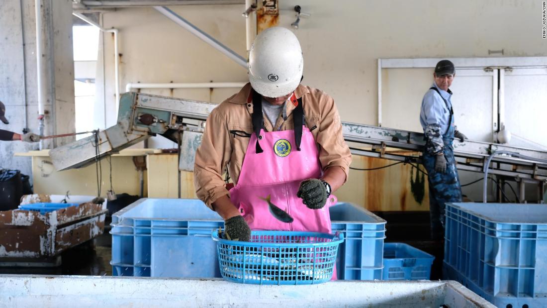 Новая виза позволит рабочим оставаться в Японии до пяти лет.