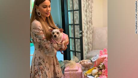 Sofia Vergara helped celebrate her son's dog's fifth birthday.
