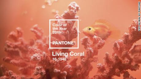 Pantone's color of the year is Living Coral - CNN