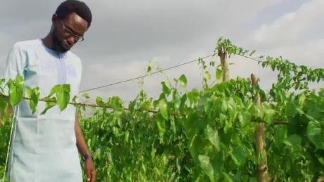 Meet the Nigerian who grows crops in the air